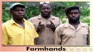 farmhands