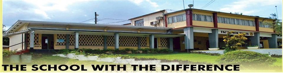 Dinthill Technical High School